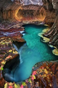 Yes, Pleeeeeaase / Emerald pool at Subway, Zion National Park, Utah.