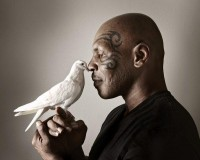Celebrity Photography by Paul Mobley and Mike Campau » Creative Photography Blog