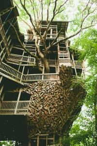 The Minister's Treehouse
