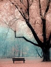 Photo love / wow.
