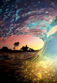 paradise / paradise