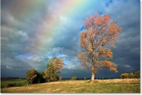 How to Photograph a Rainbow | Photography Tips