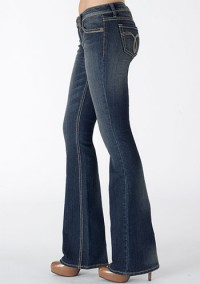 Paris Blues Stretch Stitch Flare Jean at Alloy
