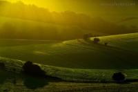 Evening Light | Flickr - Photo Sharing!