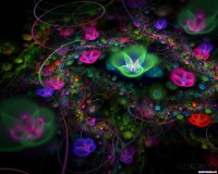 Fractal 3D Flowers 15 World Wallpaper Collection