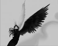 Dark-Angel-37616-188543.jpeg (1280×1024)