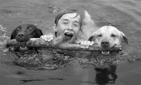 Фотопозитив: Фотографии собак