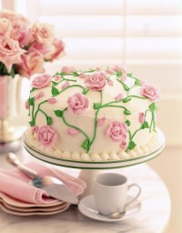 bxphneeds more cake 2896x3707 wallpaper – Cake Wallpapers – Free Desktop Wallpapers