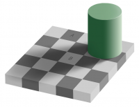 Fichier:Grey square optical illusion.PNG - Wikipédia