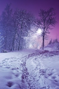 The Color Purple...my Favorite... / Snow at night by Arkku.