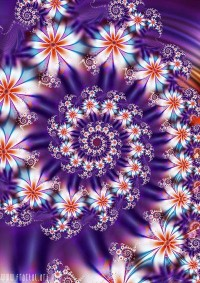 fractal14-chabros.jpg (400×566)