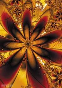 fractal16-sumineo.jpg (400×566)