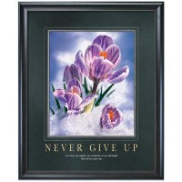 NEVER GIVE UP MOTIVATIONAL POSTER image by Successories - Photobucket