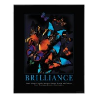 BRILLIANCE MOTIVATIONAL POSTER image by Successories - Photobucket