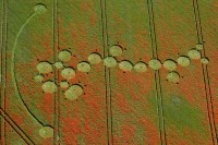 Crop Circle at Four Mile Clump, Nr Ogbourne Down, Wiltshire. Reported 29th July 2012.
