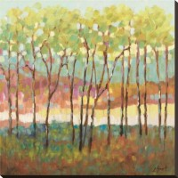 Distant Color Stretched Canvas Print by Libby Smart at Art.com