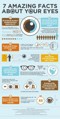 7 Amazing Facts About Your Eyes | Visual.ly