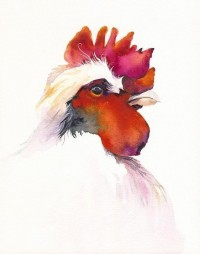 Rooster Art by amberalexander on Etsy