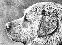WET - in Art Pen by ~ronmonroe