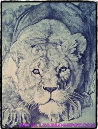 LIONESS by *Ryurules