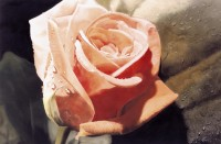 Ron Doyle | artist | paintings in watercolor and pastel