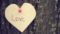 trees,love love trees hearts 1920x1080 wallpaper – trees,love love trees hearts 1920x1080 wallpaper – Tree Wallpaper – Desktop Wallpaper
