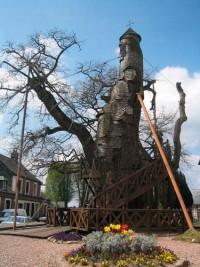 Foto Per fare una casa ci vuole un albero - 7 di 10 - D - la Repubblica