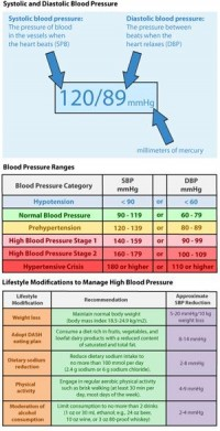 What are Blood Pressure Ranges?