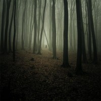 "Image Spark - Image tagged ""evil"", ""landscape photography"", ""woods"" - anotherfaceinthecrowd"
