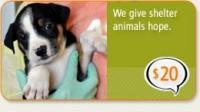 ASPCA | Become an ASPCA Guardian Today