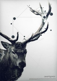 avantgarde on the Behance Network — Designspiration
