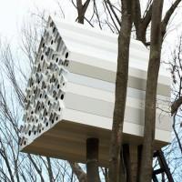 Bird-apartment treehouse by Nendo - Dezeen