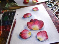 Watercolor Study. by ~Brightway