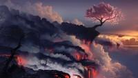 Voir l'image: terre brûlée de bureau