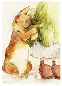 Bunnies / .