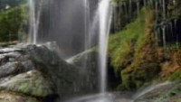 Paul Hardcastle Rain Forest - YouTube
