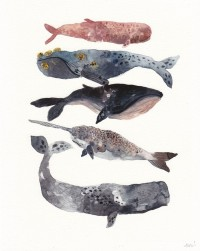 Five Whales Stacked Archival Print by unitedthread on Etsy