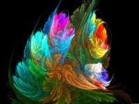 Bouquet.jpg (1600×1200)