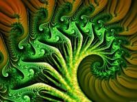 Broccoli.jpg (1600×1200)