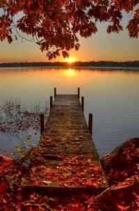 Design / Autumn Sunrise autumn