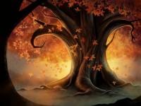 Autumn Leaves Me Breathless / Autumn Tree by ~Angela-T on deviantART