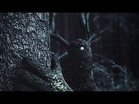 Gloam on Vimeo