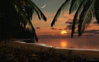 Sun,beach sun beach palm trees 1920x1200 wallpaper – Sun,beach sun beach palm trees 1920x1200 wallpaper – Oceans Wallpaper – Desktop Wallpaper