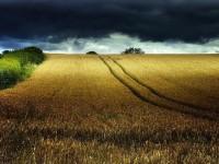 Amazing Landscapes by Eric Goncalves