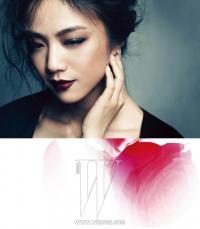 tang-wei-8.png 529×606 pixels