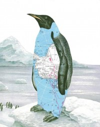 Original Collage Penguin Art Antarctica Map Art par dadadreams