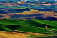 landscapes,fields landscapes fields 2560x1700 wallpaper – landscapes,fields landscapes fields 2560x1700 wallpaper – Fields Wallpaper – Desktop Wallpaper