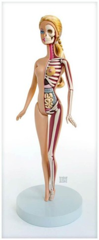 Barbie Anatomy – by Jason Freeny | Ufunk.net