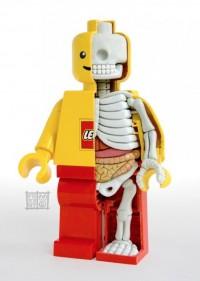 LEGO MiniFigure Anatomy | Ufunk.net