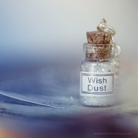 Wish dust by *lieveheersbeestje